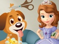 Sofia the First Dog Care